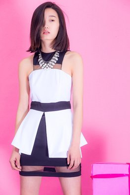 Black and White Jewel Neckline Stylish Dress (Express)