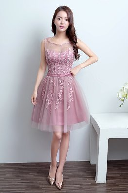 Dusty Pink Illusion Neckline Applique Mini Gown