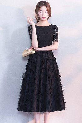 Black / White Jewel Neckline Feather Lace A-Line Dress