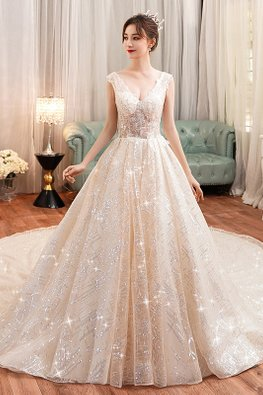 Champagne V-Plunge Illusion Bodice Sequin Patterned Wedding Gown