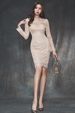 Almond Mid-High Round Neck Long Sleeves Lace Dress