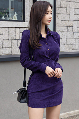 Purple Collar Neckline Long Sleeves Mini Dress